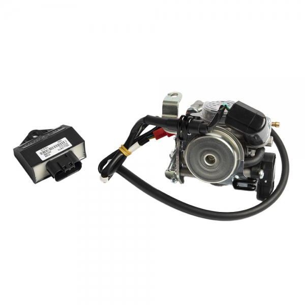 Dellorto Carburettor/ECU Kit
