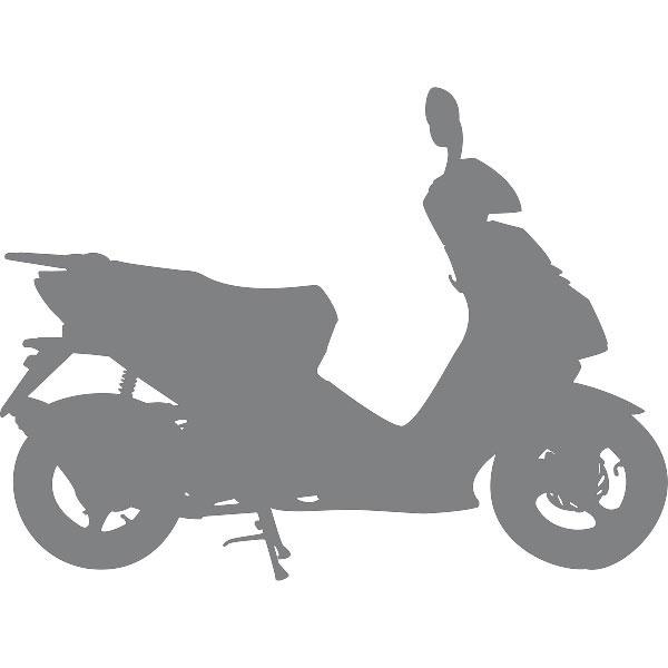 magnet rotor flywheel lichtmaschine 49cc scooter f r znen. Black Bedroom Furniture Sets. Home Design Ideas