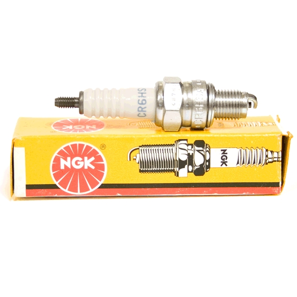 10x NGK CR6HSA Spark Plugs (2983)