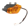 Indicator Assembly - Rear Left - Amber Lens