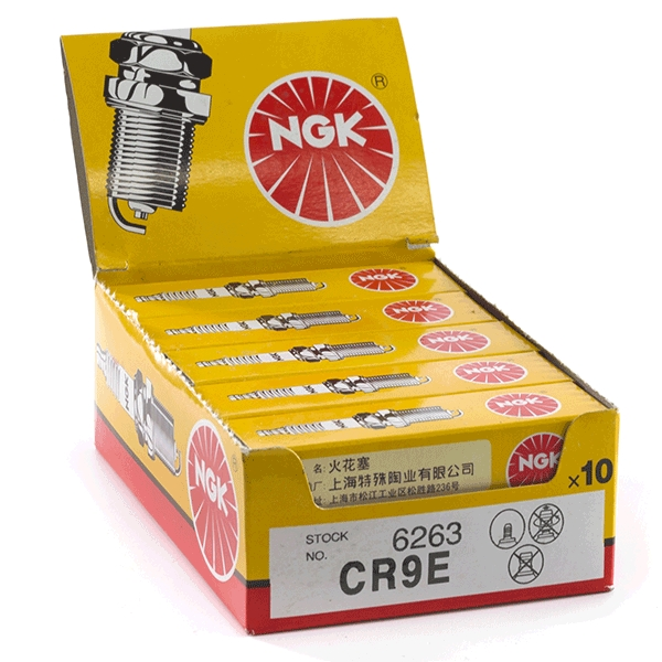 10x NGK CR9E Spark Plugs (6263)